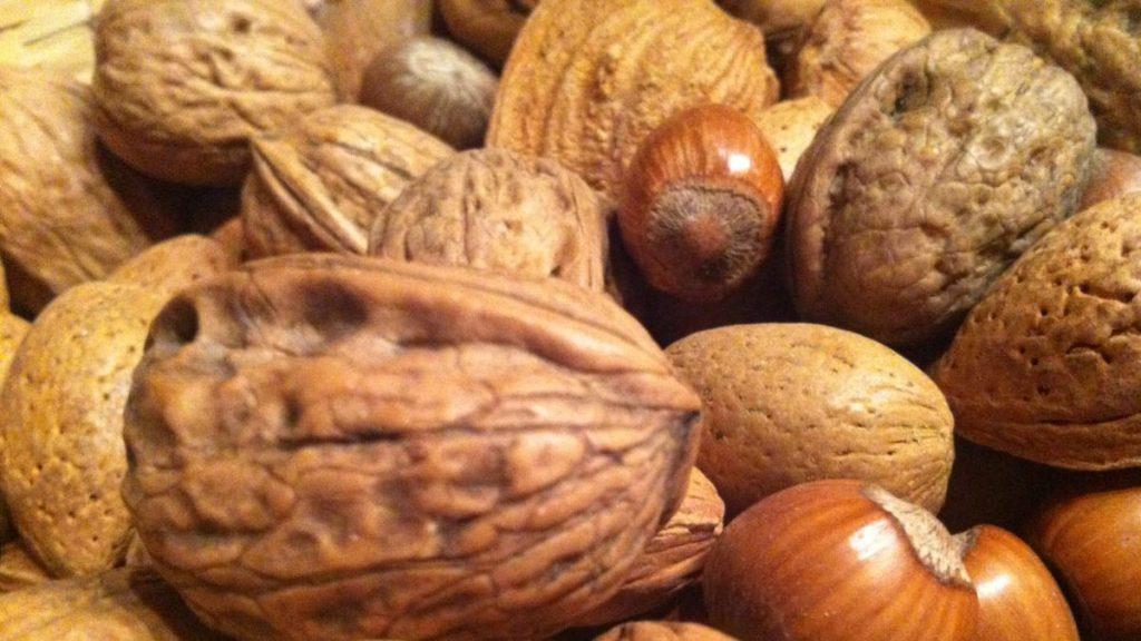 Fruits à coque excellents pour la santé