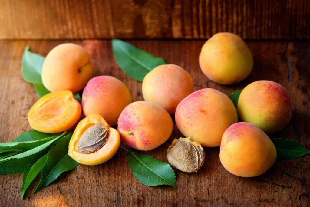 Grignotage la pomme ou l'abricot