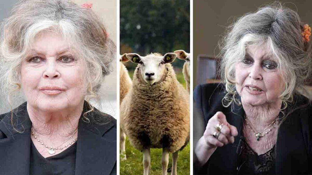 Brigitte Bardot défenseuse des animaux