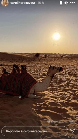 Désert et promenades en chameau