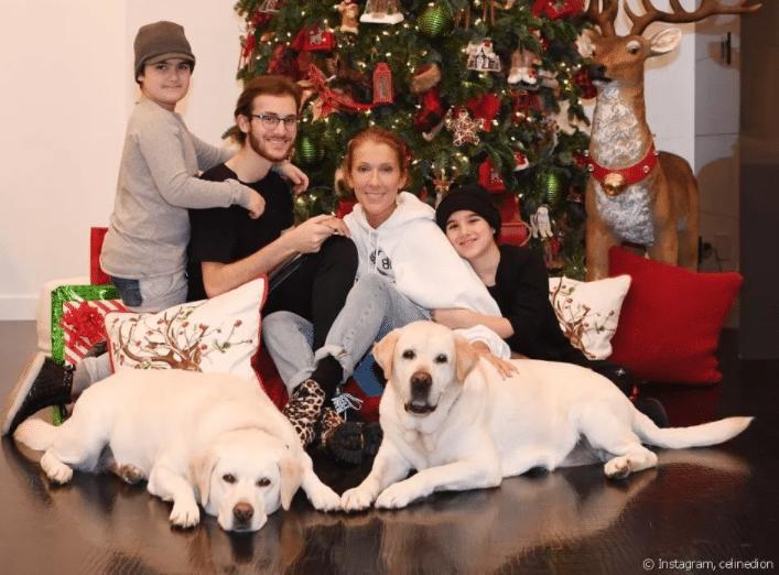 Céline Dion: un cliché rare avec ses 3 fils réunis à l'occasion de noël