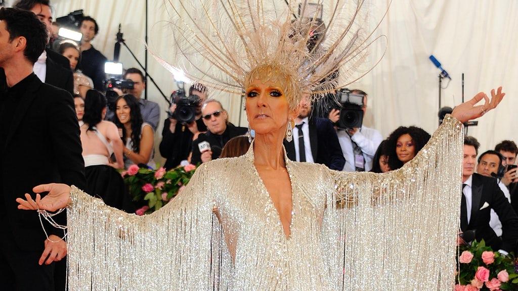 Céline Dion : son fan décide de changer d'identité ?