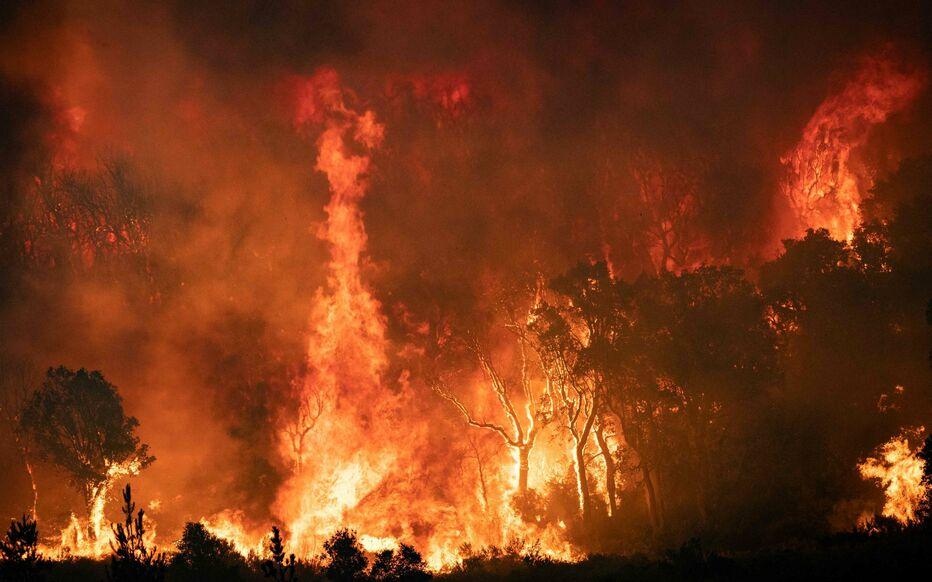 Maroc : Terribles incendies au nord du pays depuis 2 jours !