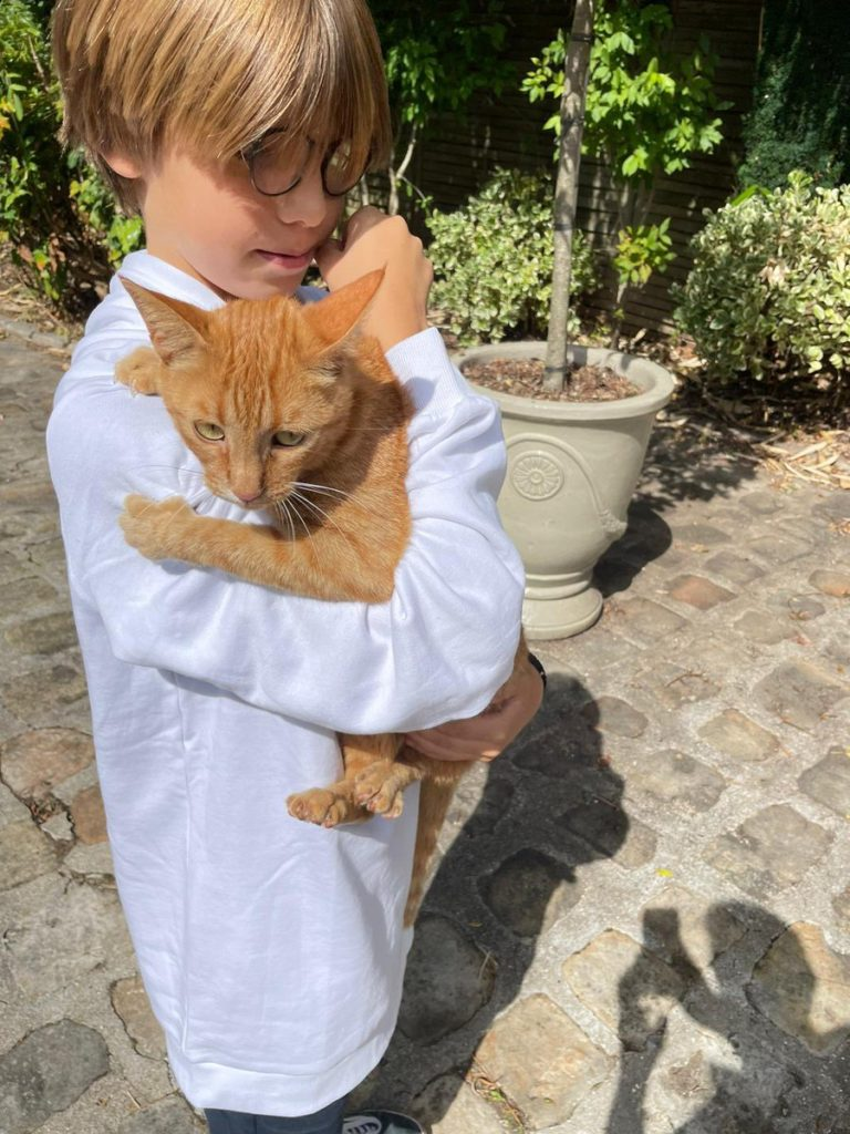 chat Isabelle Balkany Mikoko