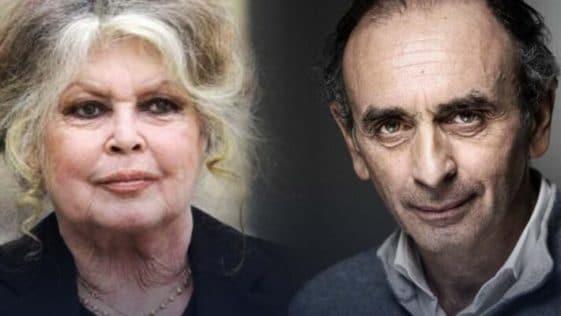 """Brigitte Bardot. """"Si Éric Zemmour se présente, je le soutiendrai"""""""